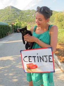 the catCetinje